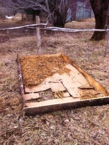 1. cardboard base layer, partial woodchip base layer