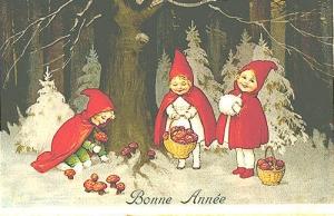 Bonne Anne Fly Agaric card